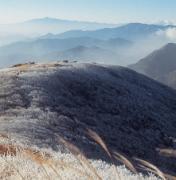 [진우석의 걷기좋은 산길] (55) 무주 대덕산