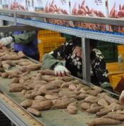 [점프코리아 2010-아이 낳고 싶은 나라]  <2부> 농촌에 아이 울음소리를   ③ 식품산업…