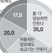 """""""한·미 FTA 車·쇠고기 추가 양보안돼"""" 35%"""