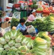 [고향을 담는 사진작가들] 진주 중앙시장