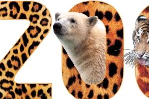 [동물박사가 들려주는 동물이야기] <5> 진화하는 동물