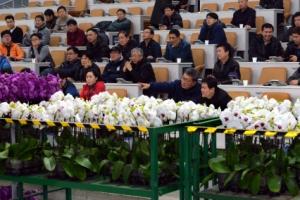 [이종원 선임기자 카메라 산책] 양재 화훼공판장 '꽃 경매장'을 가다