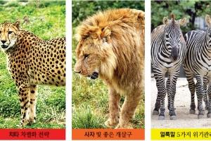 [동물박사가 들려주는 동물이야기] <20> 동물들의 생존전략