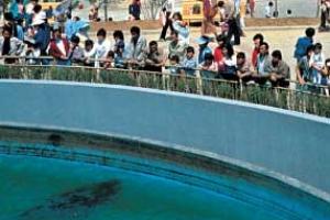 [동물박사가 들려주는 동물이야기] (21) 서울대공원 개관 30년