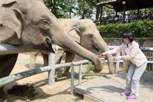[동물박사가 들려주는 동물이야기] <24>서울동물원의 자원봉사자들