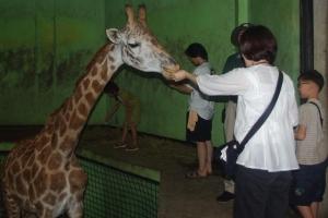 [동물박사가 들려주는 동물이야기] <26·끝>서울동물원 체험 프로그램