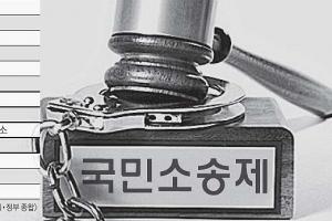 [대한민국 혁신 리포트] <4>관료에서 시민으로-국민소송제 도입을