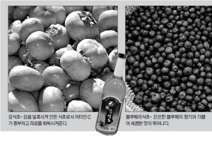 [농촌진흥청과 함께하는 식품보감] (28) 식초