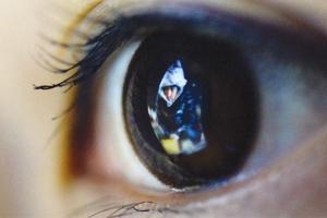 [2015 대한민국 빈부 리포트 '富'] 쥐구멍 밖 볕을 찾아 나서라… 기회는 있다, 아직…