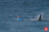 맨주먹으로 상어 쫓아낸 프로서퍼  '아찔'