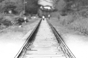 [김동률 교수의 1980's 청춘의 재발견] <11>백마 화사랑, 녹슨 기차와의 추억