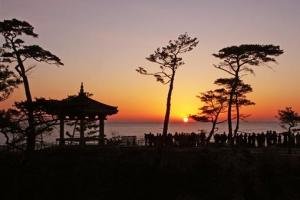 [新국토기행] 해 뜬다… 동해안 최대 휴양도시도 뜬다