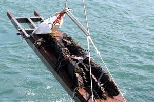[서동철 기자의 문화유산 이야기] 한양 가던 배 한 해에 66척 침몰 쌀 썩는 냄새에 운…