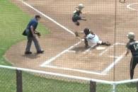기상천외한 홈 터치…미 소프트볼 경기서 펼쳐진 진풍…
