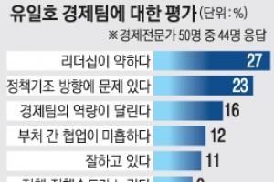 """""""우리나라 경기 회복  2018년 이후 가능"""""""