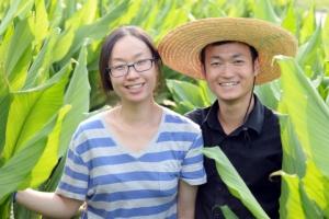 [新전원일기] 세종실록 속 '곡성 울금' 참맛 알린 38세 농사꾼… 수억 매출 '곡성 …