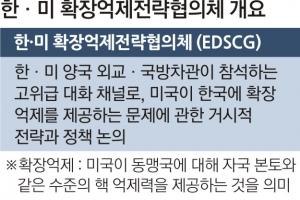 [한·미 연례안보협의회의] 북핵 거시전략 논의… 나토 '핵계획그룹'과 유사