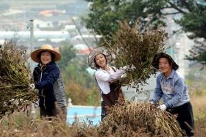 [新전원일기] 꽃농부… 흙사랑… 新청춘