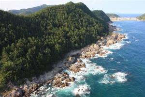 [新국토기행] 사계절 신비한 자연과 진미… 德 넘치는 영덕