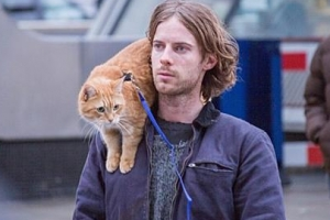[지금, 이 영화] 내 어깨 위 고양이, 밥