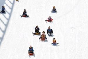 180m 눈썰매 슬로프·스노 사파리… 겨울왕국, 핫플레이스