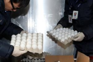 미국산 수입 계란 다음 주말부터 롯데마트서 1판에 8990원 판매