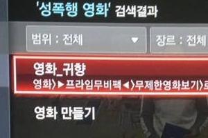 """일본군 '위안부' 영화 '귀향' 성폭행 영화로 분류한 KT """"현재 삭제"""""""