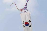 인도 국제연날리기대회 개최…인도 하늘 수놓은 한국 …