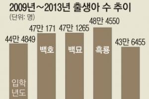 백호·백묘·흑룡띠 효과 초교 입학생 반짝 증가