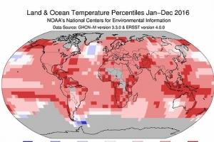 2016년 지구 역사상 가장 더웠다…3년 연속 기록 경신