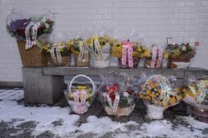 [서울포토] 특검 사무실 빌딩 앞에 놓인 꽃바구니들