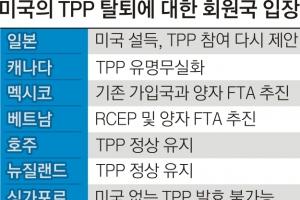 """주요 회원국들 """"美 빠지면 무의미""""  TPP 각자도생… 한국 반사이익"""