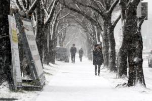 내일 강원도에는 7cm 눈이 온다