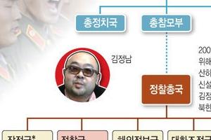 독침 피살된 김정남 가계도와 실행 조직은?