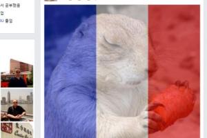 김정남 페이스북 들어가보니…프로필은 프랑스 테러 추모 사진