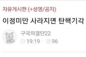 """""""이정미만 사라지면 탄핵 기각…살해하겠다"""" 글 논란…경찰 내사 착수"""