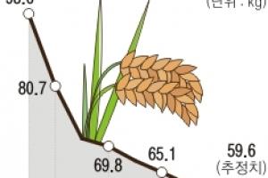 외면받는 쌀밥… 잘나가는 돼지