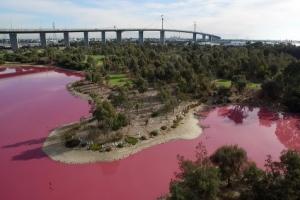 가뭄이 만든 분홍빛 호수