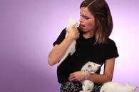 인터뷰 도중 등장한 새끼 고양이에 엠마왓슨 반응