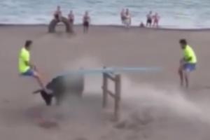 [별별영상] 시소 타며 황소 공격 피하는 남성들