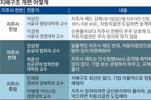 """[이슈 추적] """"지주사제 재검토"""" vs """"현행보다 강화를"""""""