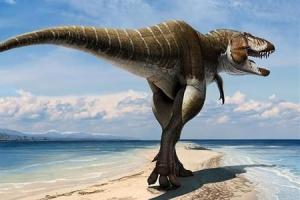 [유용하 기자의 사이언스 톡] 육식 공룡 T렉스가 뺨 부비며 사랑 표현?