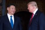 시진핑 앞에 두고 시리아 …