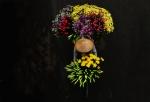 유채꽃 품은 무채색 도시