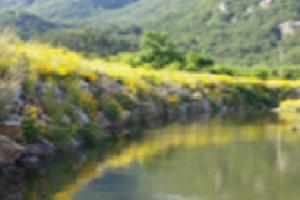 국토부, 2017년 아름답고 안전한 소하천 공모전