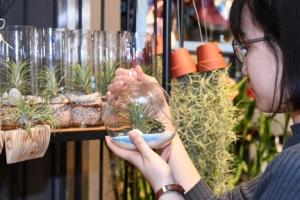 [한 컷 세상] 나랑 살래?… 반려식물 찾는 1인 가구