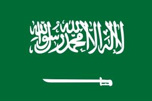 사우디 외교관 아들, 절도죄 체포 뒤 면책특권 풀려나