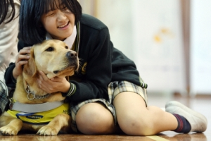 [서울포토]안내견과 따뜻한 교감해봐요~ . 세계 안내견의 날