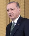 터키 에르도안 끝나지 않은…