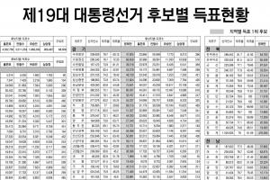 제19대 대통령선거 후보별 득표현황